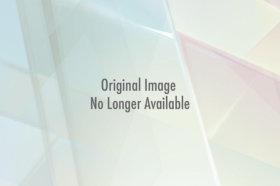 For Sale Sears Garage Door Opener Picture